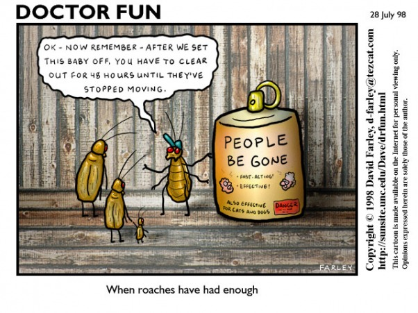 Doctor Fun comic