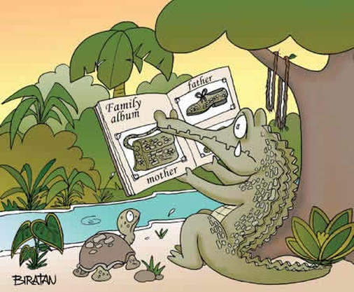 Alligator Comic